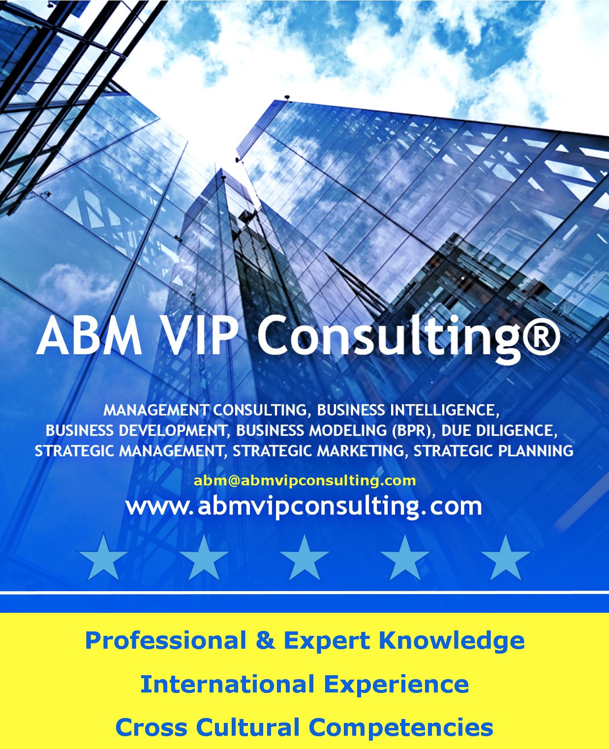About ABM VIP Consulting® Management Consulting Firm